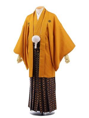 男性用袴レンタル2055紋付金茶刺子×紺金菱紋