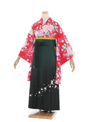 小学生卒業式袴レンタル(女の子)ARH041