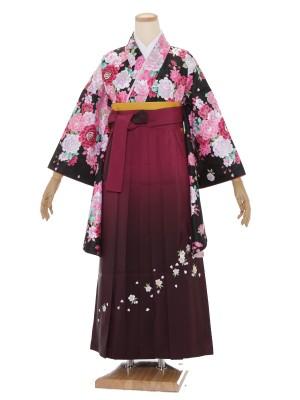 小学生卒業式袴レンタル(女の子)ARH058