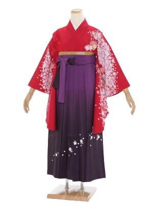小学生卒業式袴レンタル(女の子)ARH029