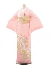 色留袖686桂由美ピンク地レースバラ