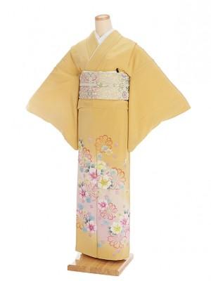 色留袖レンタル538花葉色