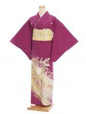 色留袖レンタル612梅紫乱菊