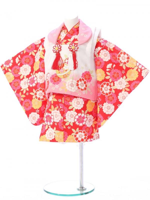 ベビー着物(女)1h31 白×ピンク/赤 桜 菊