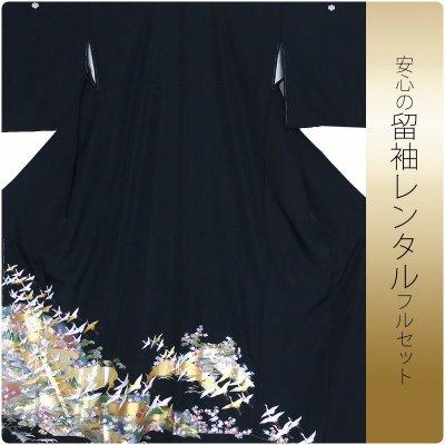 レンタル 留袖 Lサイズ フルセット 結婚式等