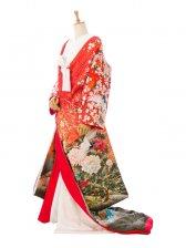 色打掛レンタル3350赤地ラメ入 裾黒 鶴と牡丹