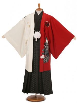 男性用袴JSM-8白赤唐獅子Lジャパンスタイル