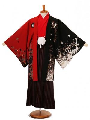 男性用袴JSM-2赤黒鯉Lジャパンスタイル