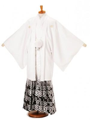 男性用袴白菊菱7/339-10LL