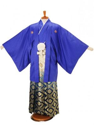 男性用袴青菱20-M/金亀甲大柄青330-M