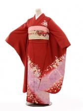振袖E075 赤地パープルぼかし桜