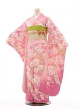 振袖E079 淡ピンク桜熨斗