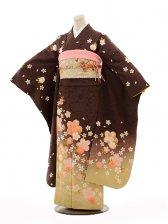 振袖E085 茶桜