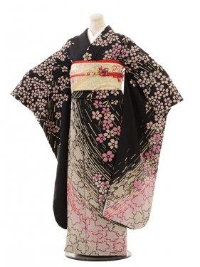 振袖E016 おぼろ染め黒桜の舞