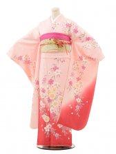 振袖E061 ピンクぼかし桜