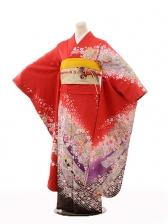 振袖E131 赤地裾紫桜しぼり