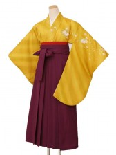 卒業袴レンタル1504山吹小花