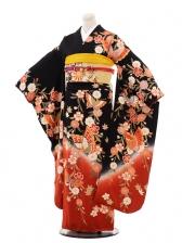 振袖C033 黒地桜と蝶