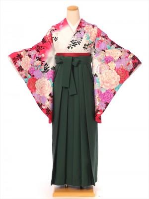 レンタル 袴 セット(AG78)