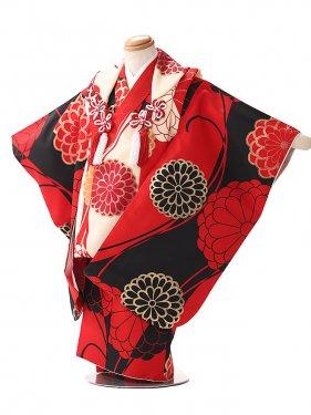 被布 女の子 モダンシリーズ 赤×黒 3216