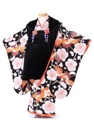七五三(3歳女子被布) G262 九重 黒鶴桜