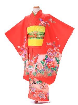 七五三(7歳女子結び帯) G190 赤 古典