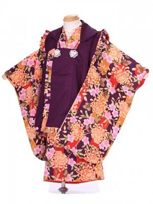 七五三レンタル(3歳女被布)G102 紫 乱菊