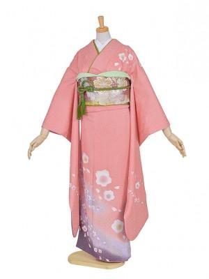 振袖 成人式 結納 ・結婚式姉妹振袖・サーモンピンクに桜FR579小柄な方