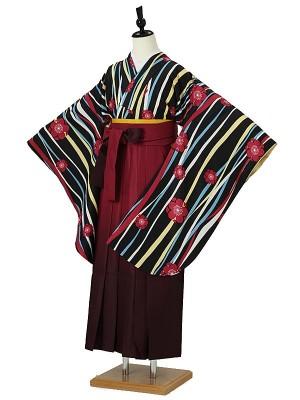 小学校卒業式ジュニア袴女0061 黒 縦縞 梅ちらし/赤ぼかし刺繍袴