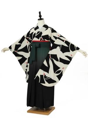 小学校卒業式ジュニア袴女0044 黒 鶴/グリーンぼかし袴