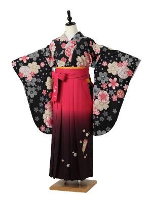 小学校卒業式ジュニア袴女0038 黒 桜/ピンクぼかし袴