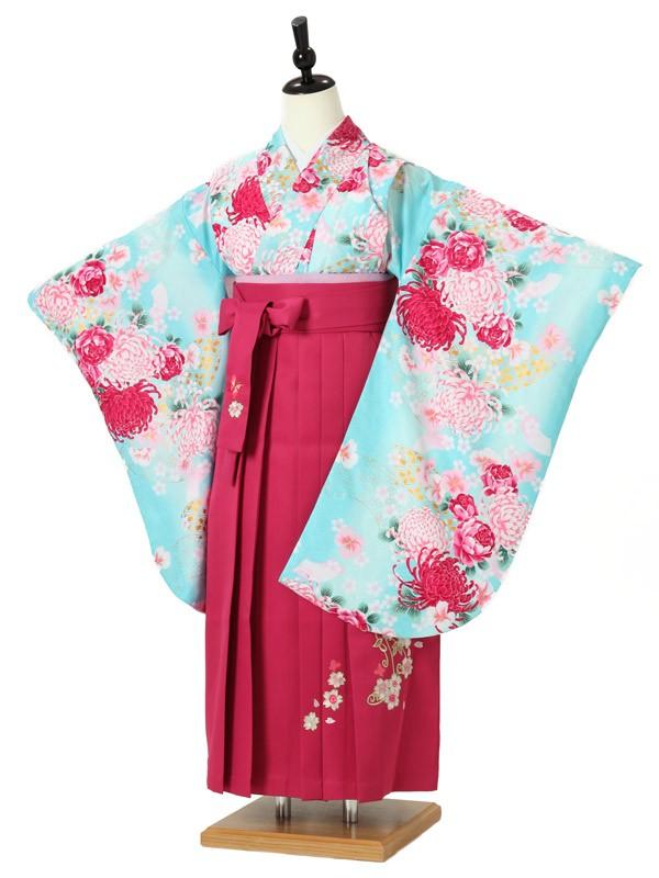 ジュニア袴女0014 水色 菊/花模様/ピンク袴