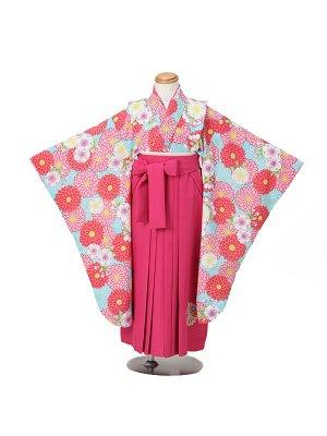 卒園式ジュニア袴女0001 水色 菊 桜 ピンク袴