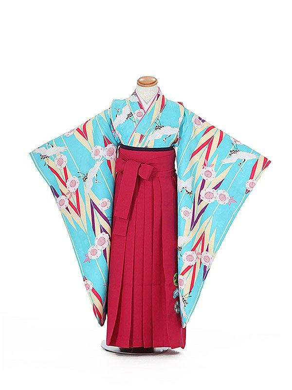 卒園式ジュニア袴女0023 水色 矢絣/鶴/桜/赤袴