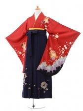 小学生卒業式袴(女の子)レンタルB074赤雪