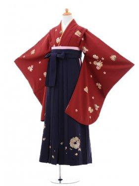 小学生卒業式袴(女の子)レンタルB052エンジ