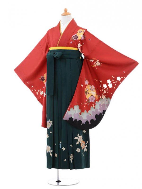 小学生卒業式袴(女の子)レンタルB042赤雪