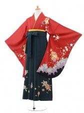 小学生卒業式袴(女の子)レンタルB082赤雪