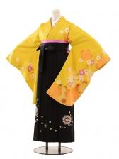 小学生卒業式袴女児B085からし桜×黒袴