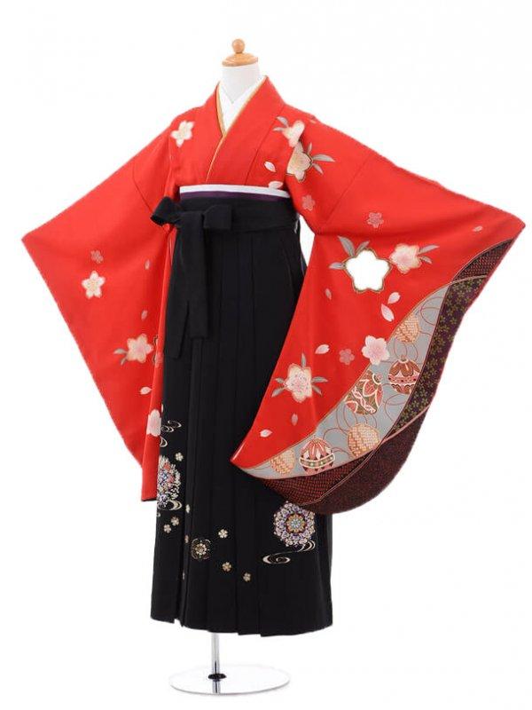 小学生卒業式袴(女の子)レンタルB058赤桜