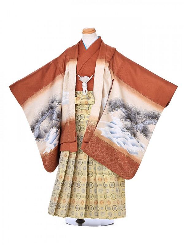 七五三レンタル(5歳男の子袴)オレンジ 鷹松 020