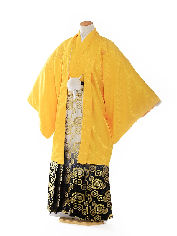 紋付 羽織着物 黄色 5号