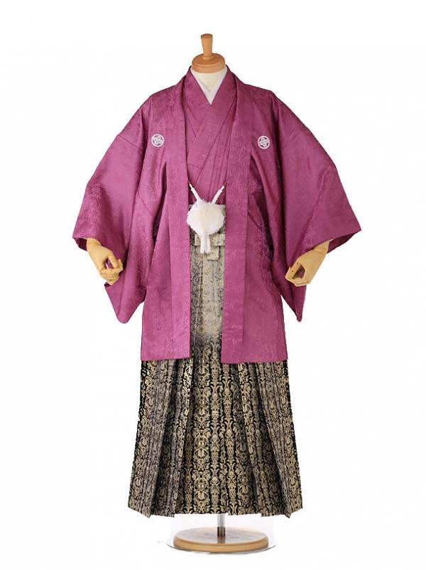 紋付 袴 男着物 紫×黒金 xg0006