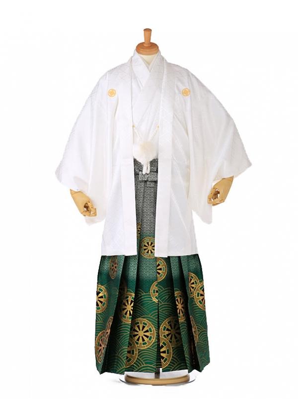 紋付 羽織着物 白×緑 6号