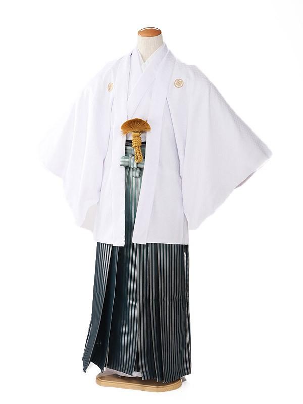 紋付 袴 白×緑袴 3号 XG0045