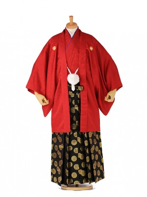 男着物 羽織袴 赤×黒金 xg0037