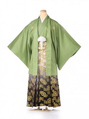 紋付 羽織着物 緑