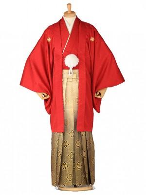 卒業式成人式袴レンタル 赤紋付×金菱0029