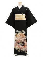 黒留袖レンタル4250花車と変わり松