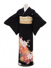 黒留袖レンタル4335HANAE MORI京友禅カサブラン
